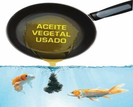 EL ACEITE DE COCINA USADO MATA LOS PECES
